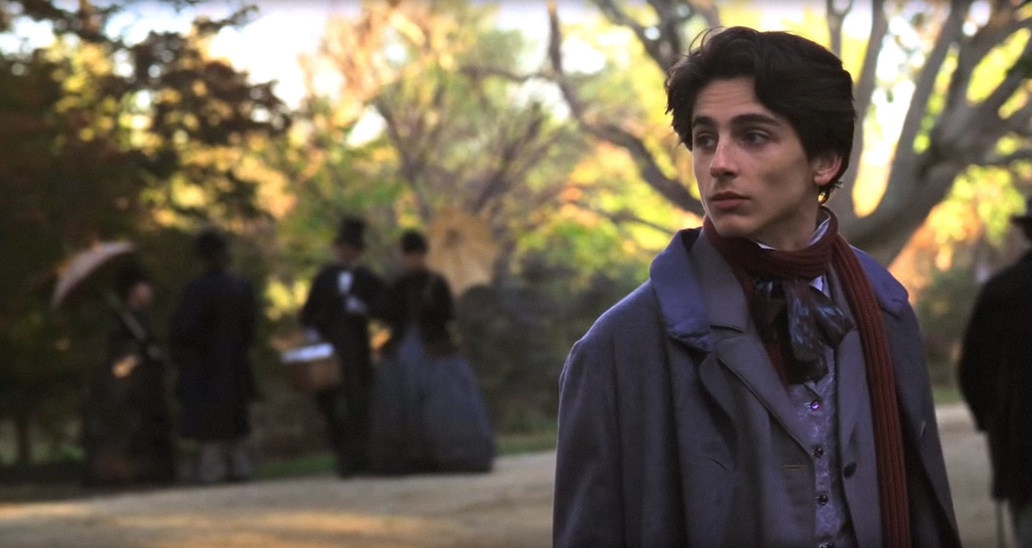 LITTLE WOMEN, Timothee Chalamet as Laurie, 2019.  Columbia Pictures / courtesy Everett Collection