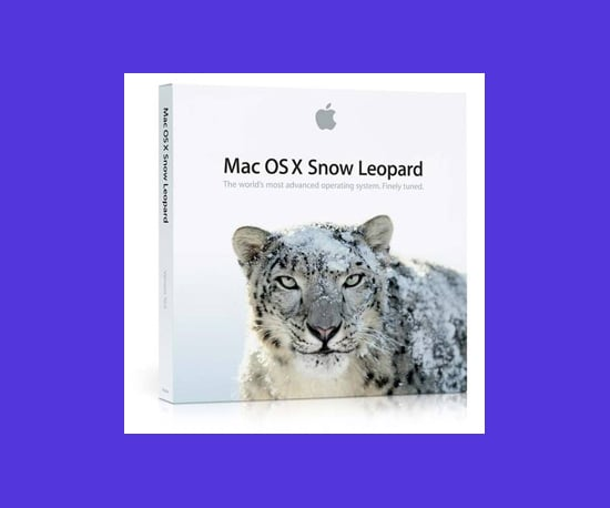 Snow Leopard Launched