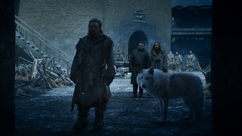Will We Ever See Ghost Again on Game of Thrones?