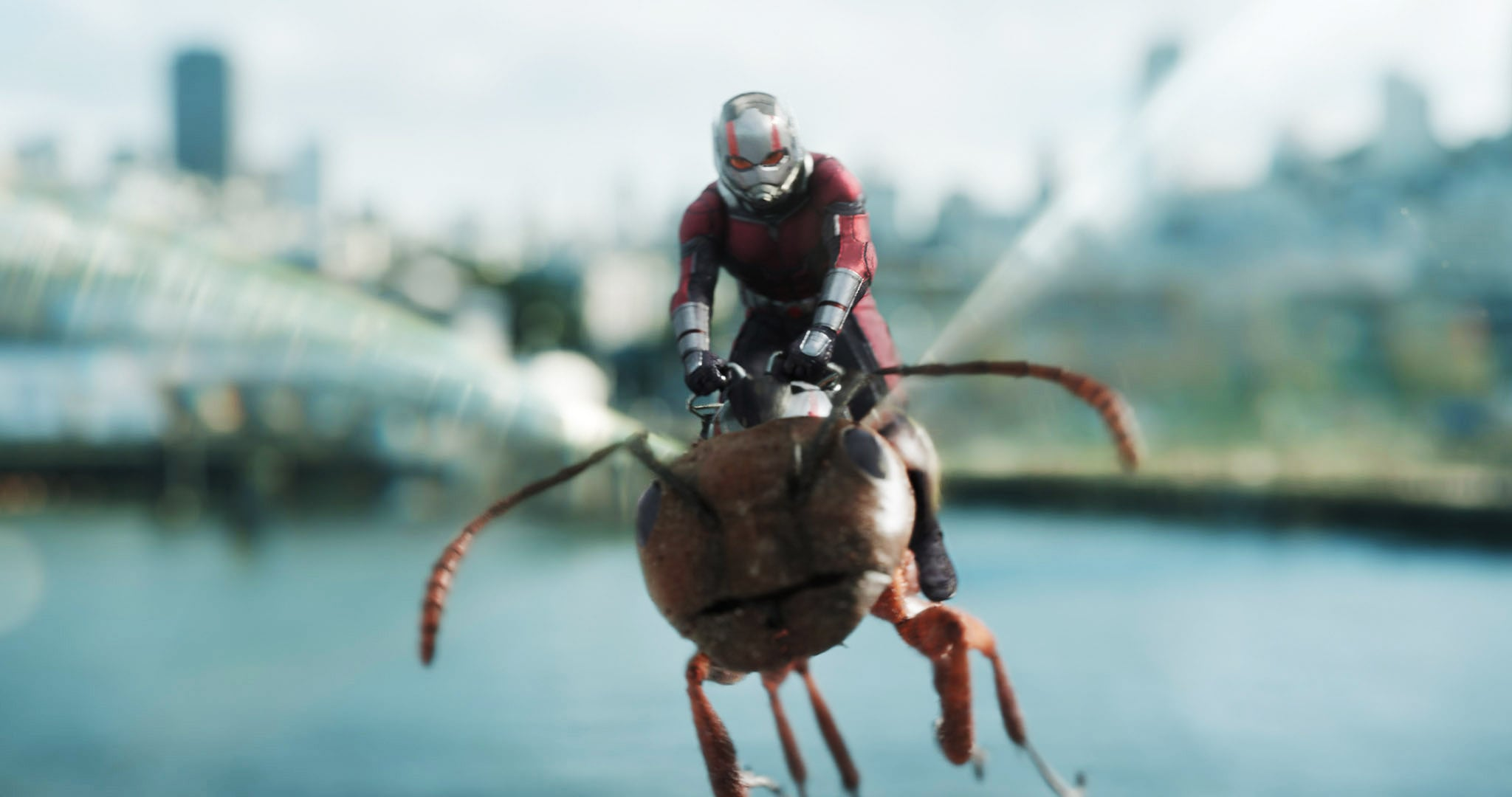 will there be an ant man 3 popsugar entertainment