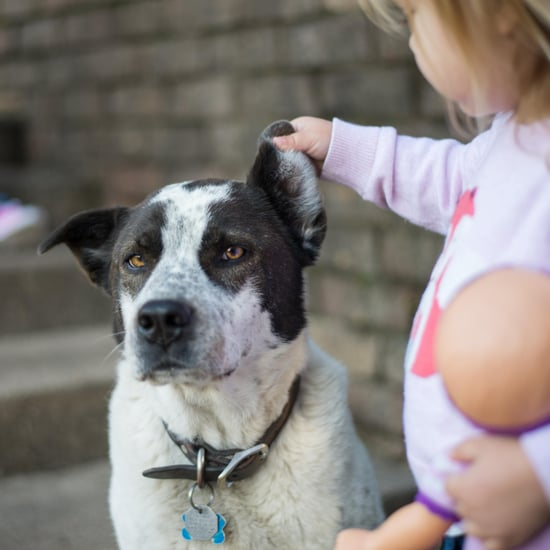 Help Kids Cope With Loss of a Pet