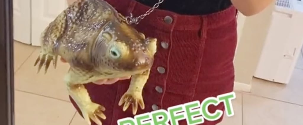 How to Make the Michaels Frog Purse From TikTok