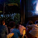 Enjoy Movie Nights Under the Stars