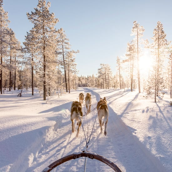 Reasons to Visit Lapland, Finland