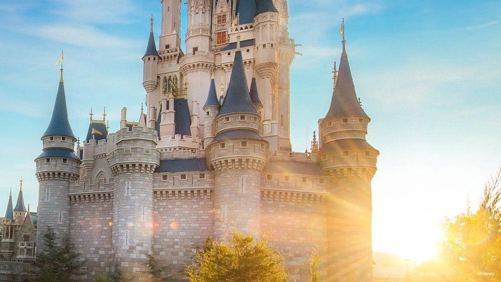 Disney World Cinderella Castle Zoom Background