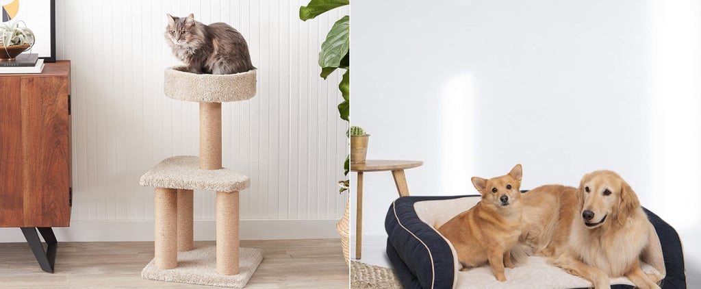 Best Pet Products on Sale For Amazon Prime Day 2021