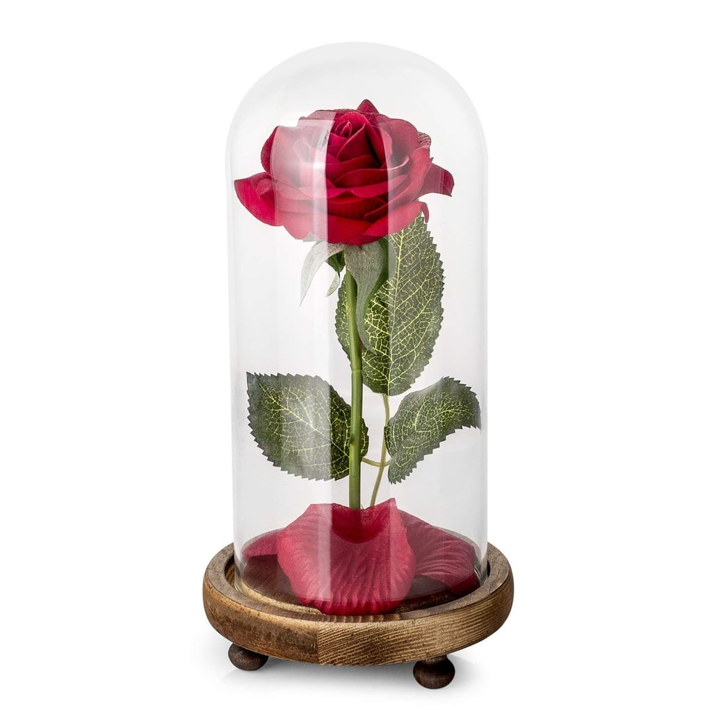 Beauty and the Beast Rose Kit