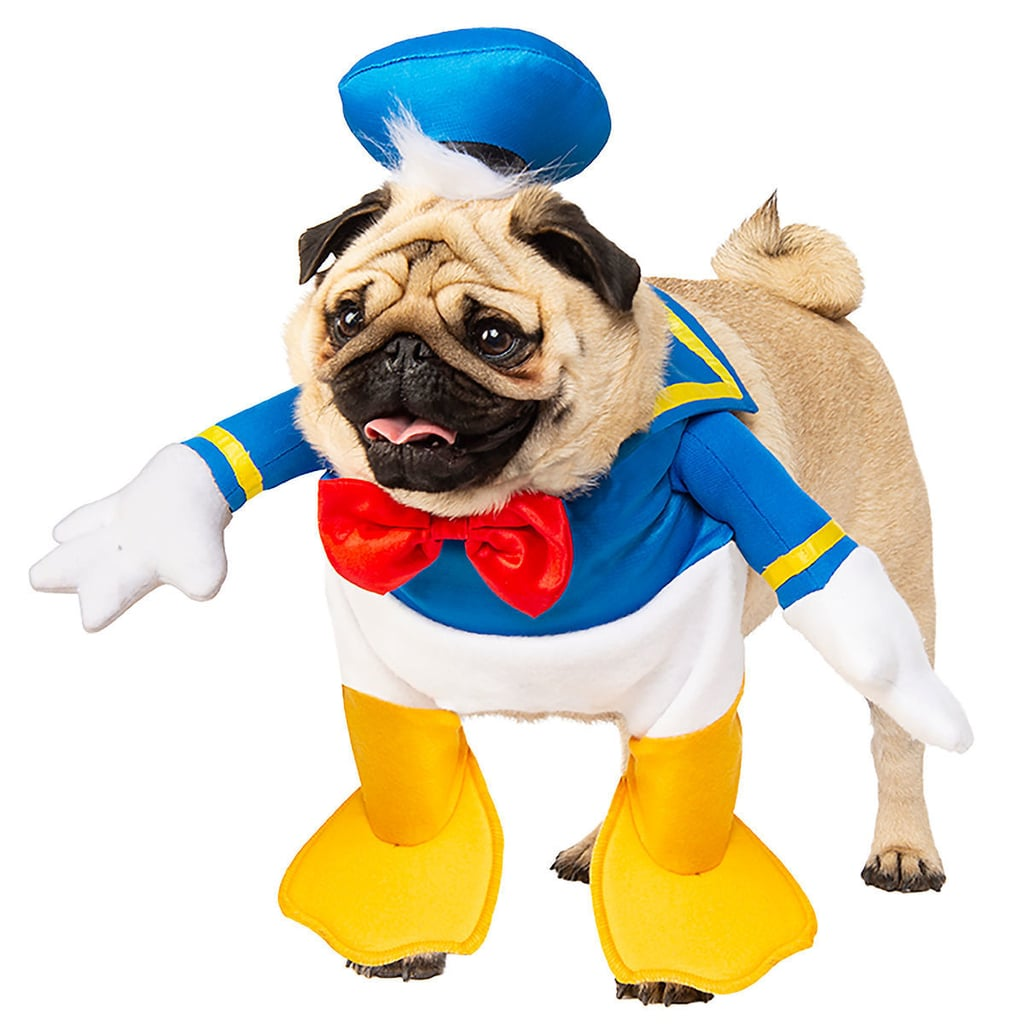 ce2801ba Disney Pet Costumes | POPSUGAR Family