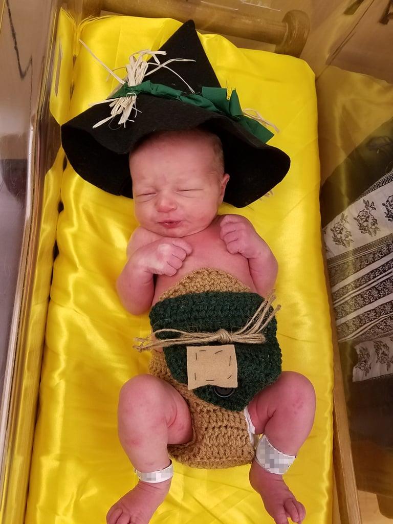 Newborn Babies Dressed in Wizard of Oz Costumes