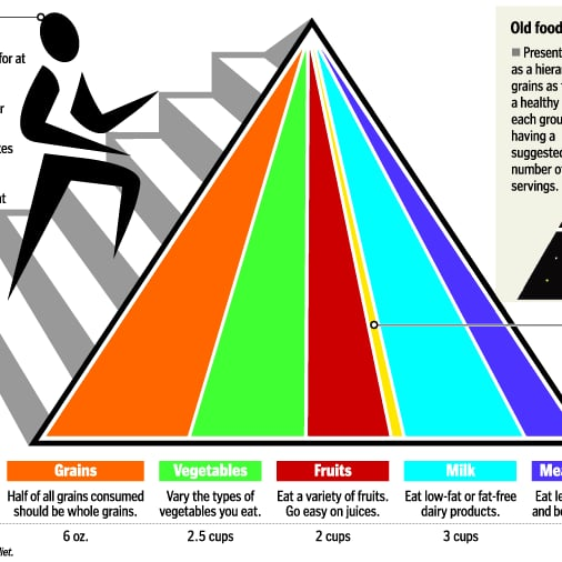 food pyramid fitness the usda to debut a new food icon to replace the current food pyramid