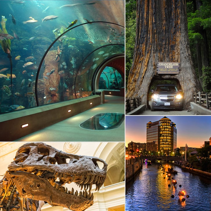 Attractions For Kids And Families Around Usa Popsugar Family