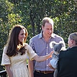 Kate and William petted a koala at a zoo in Australia. Source: Instagram user sperrypeoplemag