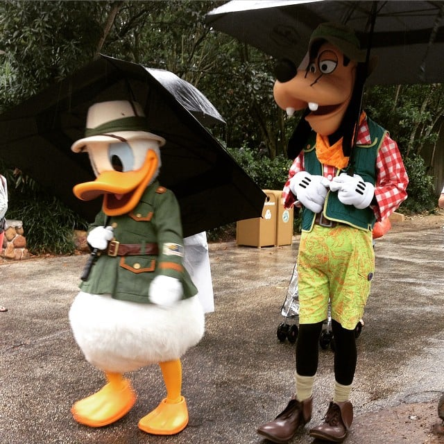 Guests will never see two of the same character at once.