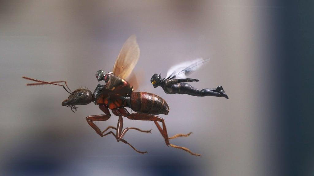 Výsledek obrázku pro ant man and the wasp