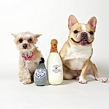 "Dog Perignon / Pawier Jouet ($25) Chloe: ""How else am I supposed to ring in the New Year?"""