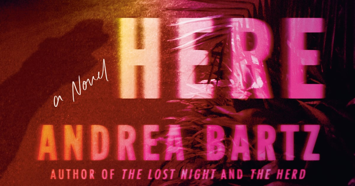 Read an Exclusive Excerpt From We Were Never Here, One of Summer's Hottest Thrillers.jpg