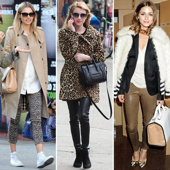 See and Shop Our Favorite Ways Celebs Wear Sassy Leopard