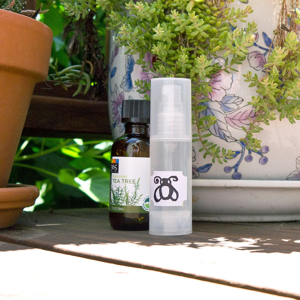 Two-Ingredient Bug Spray