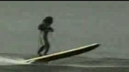 Water-Skiing Monkeys