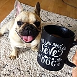The find: a paws-itively adorable coffee mug.