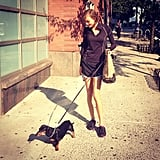 Karlie Kloss took an afternoon stroll with Derek Blasberg's dog, Monster. Source: Instagram user derekblasberg