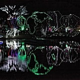 Wildlights at the Columbus Zoo and Aquarium in Columbus, OH