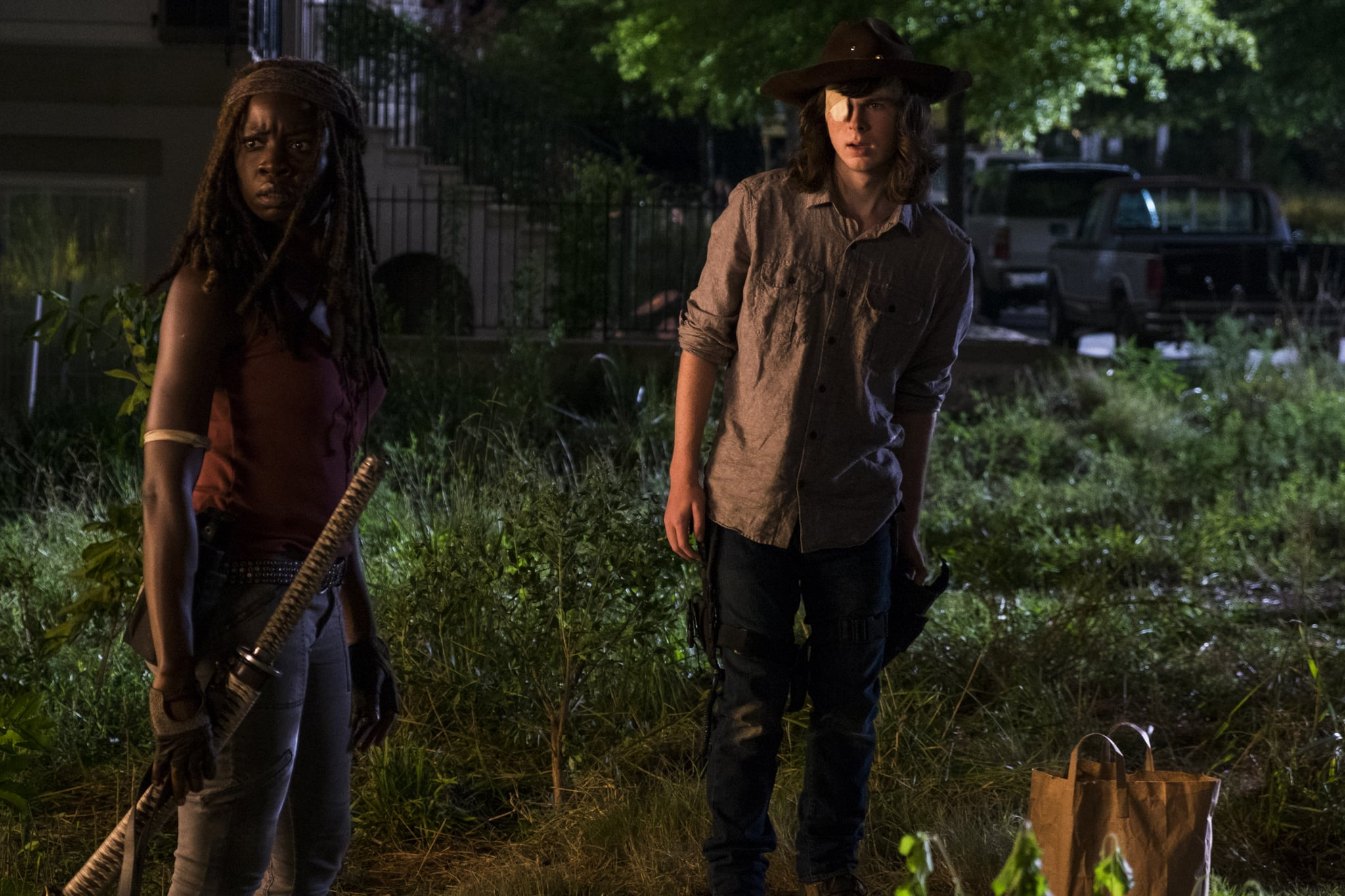 Danai Gurira Got 'Depressed' Over 'The Walking Dead' Carl Storyline