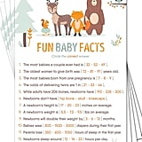 Baby Facts Game Cards