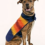 Pendleton Grand Canyon Dog Coat