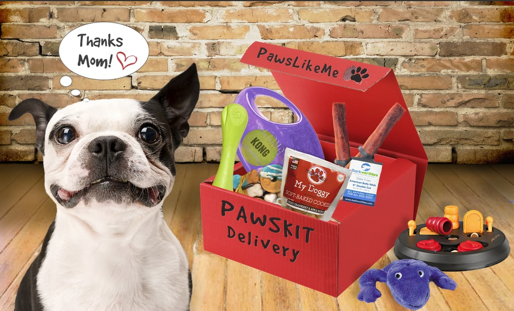 We are obviously fans of monthly subscription boxes, so when we heard about a new one that is customizable to our dogs, we were thrilled. After creating a profile for your pup, you can order a Pawskit ($20) monthly subscription box that will include toys, treats, and goodies tailored to your pet. There are 12 core personality profiles, so there is pretty much something for everyone!