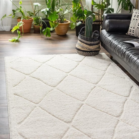 Best Area Rugs From Rugs.com