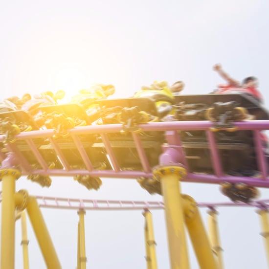 Sex Toy or Roller Coaster Quiz
