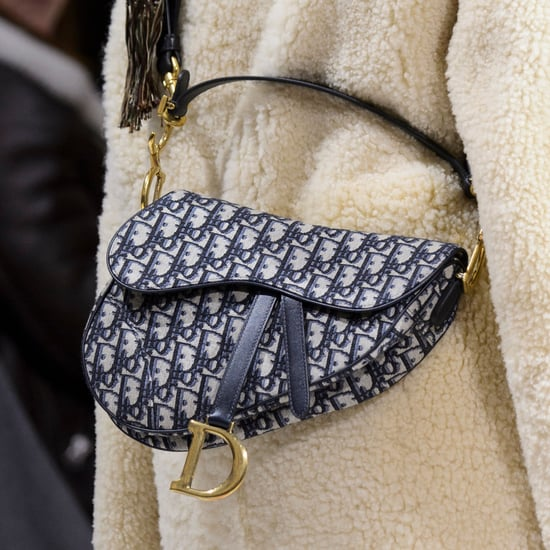 Dior Saddle Bag 2018