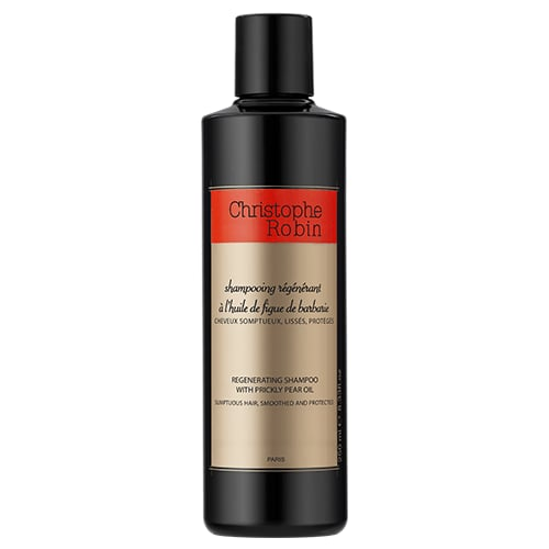 The Best Shampoo and Conditioner for Dull Hair — Christophe Robin Regenerating Duo