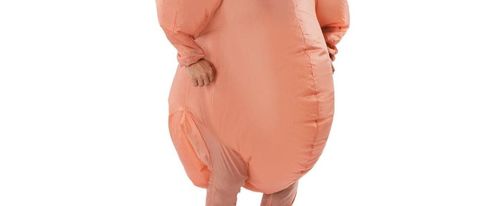 Inflatable Turkey Costume at Target