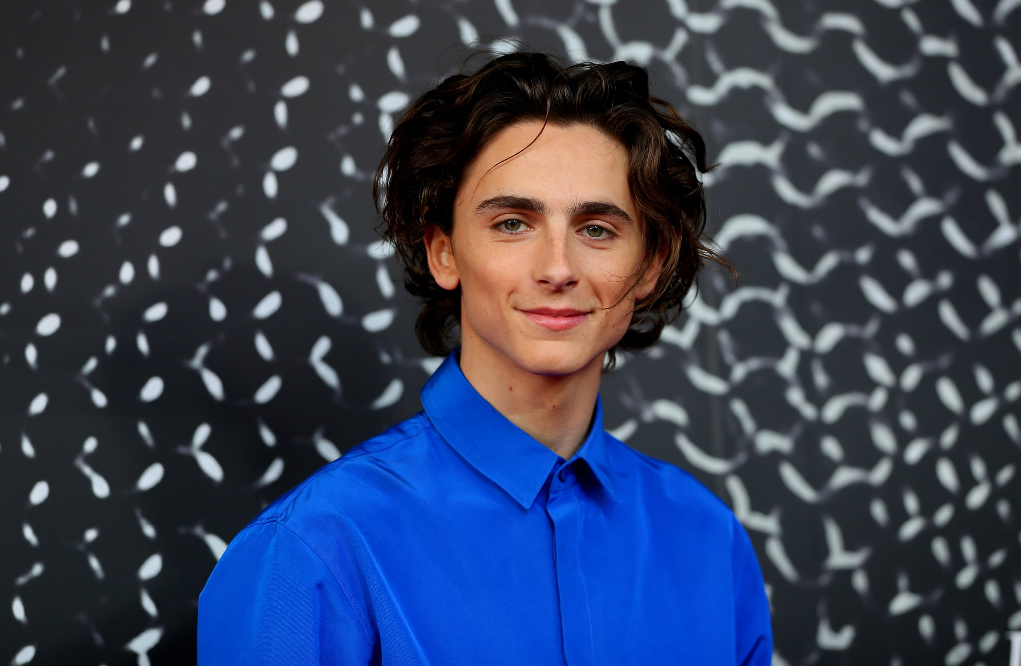 SYDNEY, AUSTRALIA - OCTOBER 10: Timothee Chalamet attends the Australian premiere of THE KING at Ritz Cinema on October 10, 2019 in Sydney, Australia. (Photo by Don Arnold/WireImage)