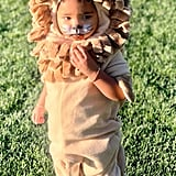 True Thompson's Lion Halloween Costume