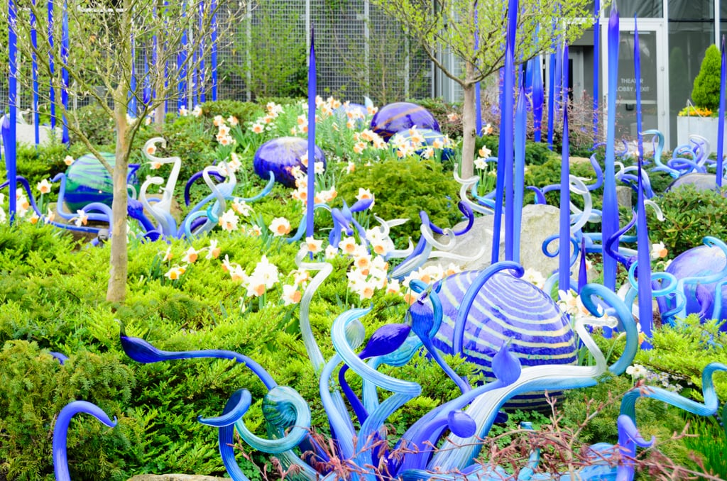 Chihuly gardens garden ftempo - Chihuly garden and glass discount tickets ...