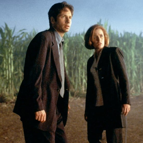 The X-Files Returning as a Limited Series