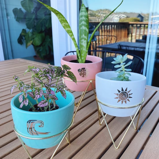 Cute Indoor Planters at Target | Editor Review 2021