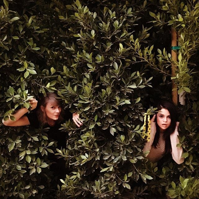 "Selena Gomez and Taylor Swift just gave friendship goals a whole new meaning. On Friday, the longtime pals took to Instagram to recreate Taylor's ""Out of the Woods"" music video — and the results were, of course, too cute for words. In the snaps, the ladies are shown peeking out from huge green shubs with big smiles on their faces. ""Are we out of the woods yet?"" Taylor captioned her post, while Selena wrote, ""Are we in the clear yet?"" quoting the lyrics from her 1989 album. The fun snaps come less than a week after a fan crashed Taylor and her boyfriend, Calvin Harris's, romantic dinner in LA and took to Instagram to document the moment, hilariously writing, ""Awesome dinner with mom and dad."" Keep reading to see the pictures, and then check out the dreamy music video for ""Out of the Woods."""