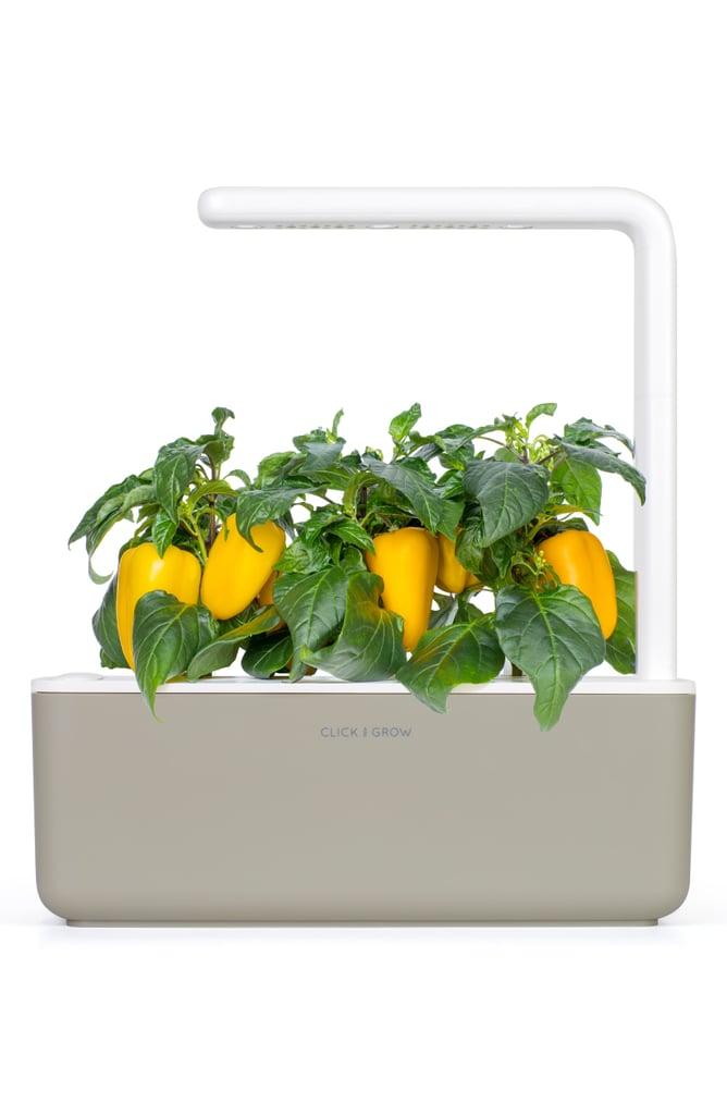 Click & Grow Smart Garden 3 Self Watering Indoor Garden