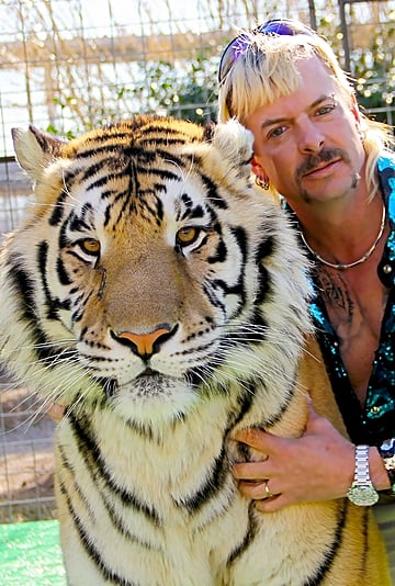 Best Tiger King Beauty Memes
