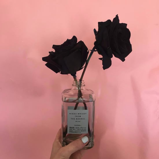 Can You Grow Black Roses?