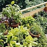Make a Mobile Planting Cart