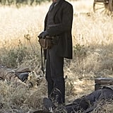 The Man in Black From Westworld