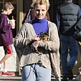 Britney Spears brought her precious Yorkie, Hannah Spears, on a Starbucks run in December 2012. Hannah even has her own Twitter account.