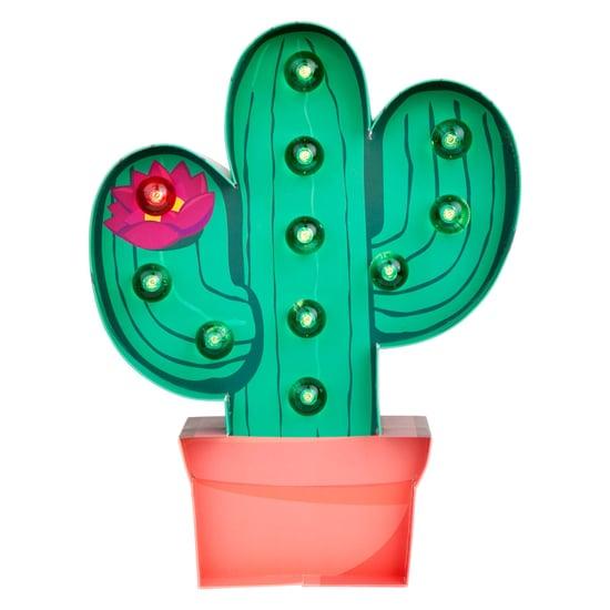 Cactus Decor Trend