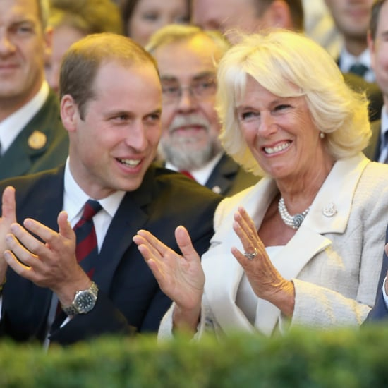 Do Prince William and Prince Harry Get Along With Camilla?
