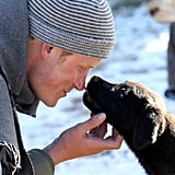 Prince Harry got licked on the nose by a puppy in Lesotho during a visit in June 2010.